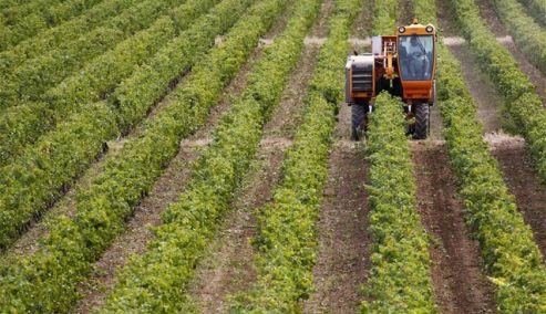 αγρότης φορολογία