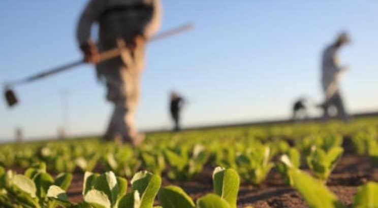 φορολογία αγρότες οδηγός Καβάλα